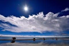 XIZANG Virgin与水反射的湖冰川 库存图片