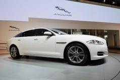 Xj blanc de jaguar Photos stock