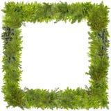 Xmas杉树照片框架 免版税库存图片