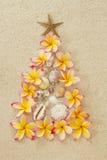Xmas结构树,热带概念 库存图片