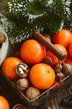 Xmas装饰wih蜜桔、坚果和杉树枝杈 库存照片