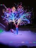 XMAS światła Zdjęcie Royalty Free