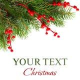 xmas рождественской елки предпосылки стоковые фотографии rf