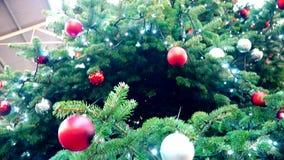 xmas 全景圣诞树 股票视频