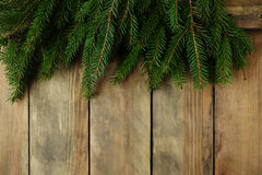 Xmas background with green spruce Royalty Free Stock Photography