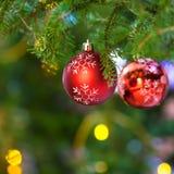 Red balls with snowflake on fresh christmas tree royalty free stock photos