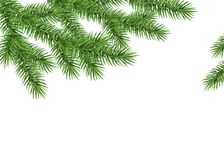 Xmas background with spruce branch. Green fir. Realistic Christmas tree. Vector illustration for  cards, banners, flyers, New year party posters Royalty Free Stock Photos