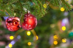 Two red balls on fresh fir christmas tree twig royalty free stock photo