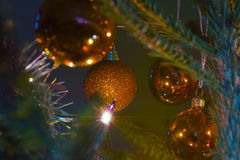 Xmas bauble on tree Royalty Free Stock Images