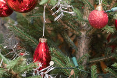 Xmas bauble on tree Stock Photo