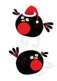 Xmas bird Royalty Free Stock Photos