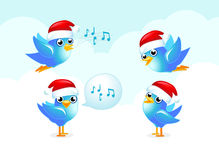 Xmas Blue birds. Xmas set. Tweet-tweet blue bird tweeting Stock Image