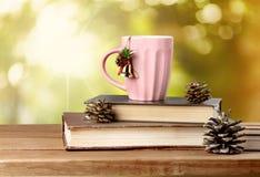 Xmas books Royalty Free Stock Photo