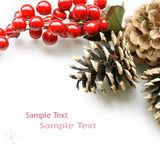 Xmas Christmas Tag Berries. Red holly berries and pine cones on a white background Stock Photography