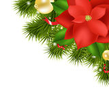 Xmas Composition With Red Poinsettia. Isolated On White Background, Vector Illustration Royalty Free Stock Photography