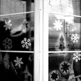 Xmas decor. Winter time. Artistic look in black and white. Royalty Free Stock Image
