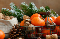 Xmas decoration wih tangerines, nuts and pine tree twigs Stock Images