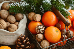 Xmas decoration wih tangerines, nuts and pine tree twigs Stock Photos