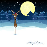 Xmas deer Stock Photography