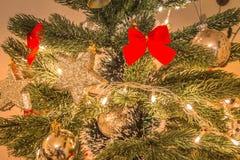 Xmas drzewo z dekoracjami obraz royalty free