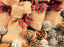 Xmas gift, christmas pine cone Royalty Free Stock Photography