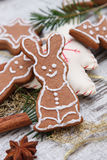 Xmas gingerbread cookies Stock Image