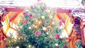 Xmas. Panorama of a colorful Christmas tree. stock video footage