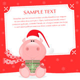 Xmas Pig. Lovely christmas greeting card. Sample text, place your text  — personalize your message Stock Photos
