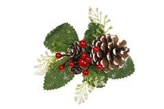 Xmas pine cone Royalty Free Stock Image