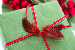 Xmas present with feathers Royalty Free Stock Photos