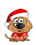 Xmas puppy Stock Images