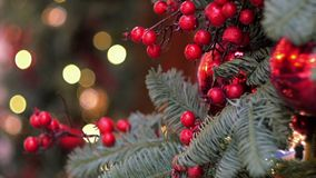 Xmas red berry decoration. Christmas decoration of red berries on fir tree branches and sparkling lights in shopping center. Tilt up, close up stock video