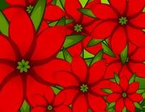 Xmas Red Poinsettia Background stock illustration