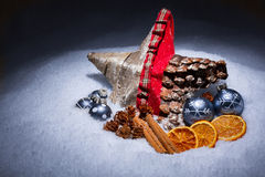 XMAS Star. In snow with decorations Stock Photography