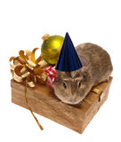 Xmas still-life Stock Photography