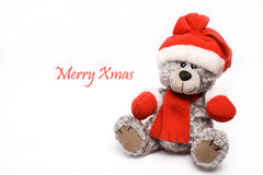 Xmas Teddy Bear. Isolated on white background with text Merry Xmas Stock Image