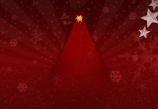 Xmas Tree. Xmas Celebration with nice Xmas tree theme royalty free stock photography