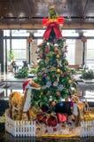 Xmas tree Stock Photos