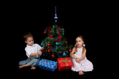 Xmas tree stock photo