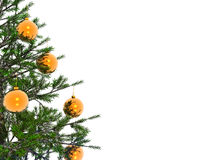 Xmas tree Stock Photography
