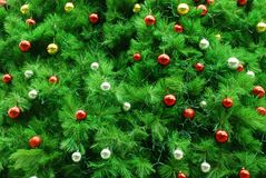 Xmas tree background Royalty Free Stock Image
