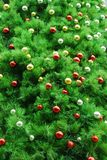 Xmas tree background Stock Image