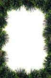 Xmas Tree Border Stock Image