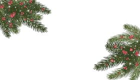 Christmas trees, isolated. Branches of Christmas trees and red. Xmas tree branches,red berries and snowflakes, sparkles.Merry Christmas and Happy New Year Royalty Free Stock Photography