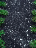 Xmas tree branches on winter snowbound black space background Stock Images