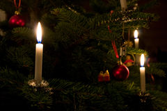Xmas Tree Candle Royalty Free Stock Images