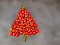 Xmas tree with cherry tomatoes Royalty Free Stock Photography