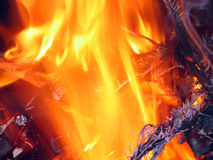 Xmas tree in flames. Close up of Xmas tree in flames royalty free stock photography