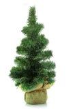 Xmas tree isolated Royalty Free Stock Image
