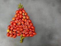 Xmas tree with cherry tomatoes Stock Photo